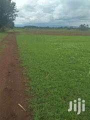 Land 35 Acres In Kabenes 800k Per Acre | Land & Plots For Sale for sale in Uasin Gishu, Kuinet/Kapsuswa