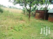 1/4 Acre Land  For Sale Turbo | Land & Plots For Sale for sale in Kakamega, Mautuma