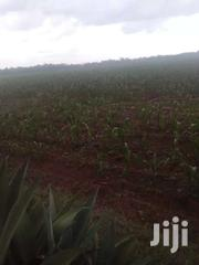 Land 5 Acres In Cheptiret 800k Per Acre | Land & Plots For Sale for sale in Uasin Gishu, Cheptiret/Kipchamo