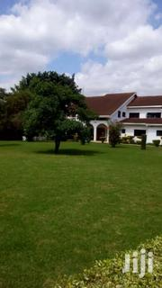 Runda Grove 1&2 Bedroom Fully Furnished /Serviced Apartments To Let | Houses & Apartments For Rent for sale in Nairobi, Karura