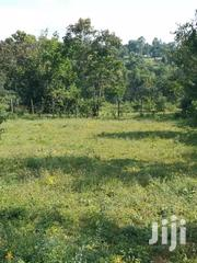100x100 Plot On Sale In Rongo Town,Gracer | Land & Plots For Sale for sale in Migori, Central Kamagambo