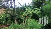 2 Acres At Maragwa Sammery For 2 . 7m Each. | Land & Plots For Sale for sale in Murang'a, Kagundu-Ini