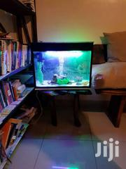 Aquarium And Accessories | Pet's Accessories for sale in Nairobi, Embakasi