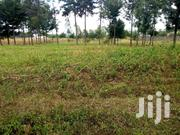Land For Sale In Ngata (One Acre) | Land & Plots For Sale for sale in Nakuru, Mosop