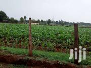Land 7.7acres @ 1,200,000 Per Acre | Land & Plots For Sale for sale in Uasin Gishu, Soy