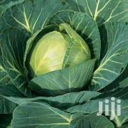 Quality Gloria F1 Cabbages | Meals & Drinks for sale in Nyandarua, NjabiniKiburu