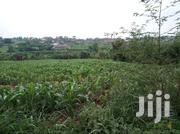 Ruiru Residential Plots In A Gated And Controlled Estate | Land & Plots For Sale for sale in Kiambu, Township C
