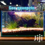 Custom Made Aquarium | Pet's Accessories for sale in Nairobi, Nairobi Central