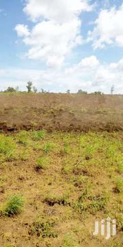 Residential Plot At Kwale Town 40 By 80 With Ready Papers   Land & Plots For Sale for sale in Kwale, Tsimba Golini