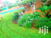 Garden Designing | Landscaping & Gardening Services for sale in Kiambu, Ndumberi