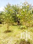 Isinya Prime Plots For Sale | Land & Plots For Sale for sale in Kitengela, Kajiado, Kenya