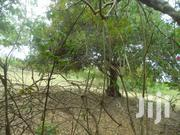 Half  An Acre For Sale In Diani 15M | Land & Plots For Sale for sale in Kwale, Kinondo