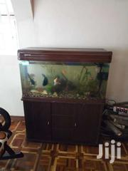 Fish Tank | Home Appliances for sale in Machakos, Athi River