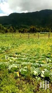 20acres Laikipia County Ngobit Suitable For Tomatoes Or Fruit Farming | Land & Plots For Sale for sale in Laikipia, Ngobit