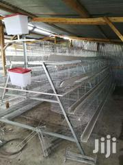 Chicken Layer Cages | Livestock & Poultry for sale in Nairobi, Roysambu