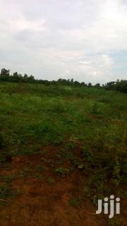5 Acres Agricultural Land | Land & Plots For Sale for sale in Siaya, South Sakwa (Bondo)