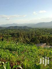 Agricultural And Settlement Land On Sale   Land & Plots For Sale for sale in Makueni, Kiima Kiu/Kalanzoni