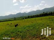 13 Acres For LEASE- Nyandarua | Land & Plots For Sale for sale in Nyandarua, Mirangine