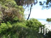 Lucrative  3 Acres Sandy Beach Plot In Diani For Sale!! | Land & Plots For Sale for sale in Kwale, Kinondo