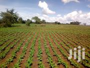 1 Acre | Land & Plots For Sale for sale in Uasin Gishu, Racecourse