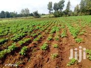 Free Viewing- 15 Acres In Nyandarua | Land & Plots For Sale for sale in Nyandarua, Mirangine