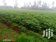 7 1/4 Acres In Nyandarua | Land & Plots For Sale for sale in Nyandarua, Mirangine