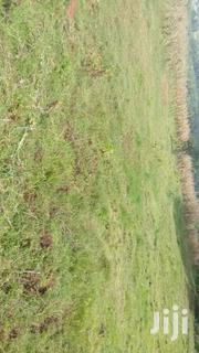 35 Acres Shamba For LEASE- Nyandarua | Land & Plots For Sale for sale in Nyandarua, Mirangine