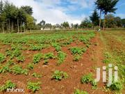 1 Acre Touching Road- Tumaini | Land & Plots For Sale for sale in Nyandarua, Mirangine