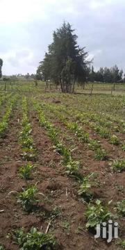 LAND 2 ACRE. | Other Services for sale in Nyandarua, Central Ndaragwa