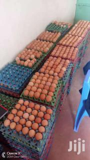 Eggs For Sale. Ksh 290 Per Tray. Situate Along Kamakis . | Livestock & Poultry for sale in Nairobi, Parklands/Highridge