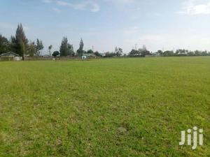 Several 1/8th Acre Vacant Plots For Sale In Sobea, Nakuru