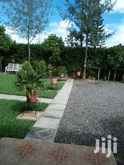 5 Bedrooms + Dsq On 1/4 Acre Syokimau Msa Rd | Houses & Apartments For Sale for sale in Machakos, Syokimau/Mulolongo