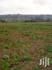 1 Acre Naivasha Near Cables Factory Raini | Land & Plots For Sale for sale in Nakuru, Naivasha East