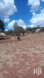 A 5 ACRE LAND FOR SELL | Land & Plots For Sale for sale in Machakos, Matungulu West