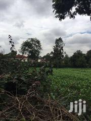 10acres For Sale Between Makutano And Sagana Near To CMI  5m Each   Land & Plots For Sale for sale in Kirinyaga, Nyangati