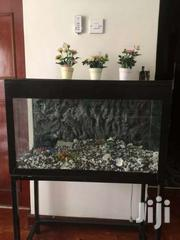 Aquarium | Fish for sale in Nairobi, Kilimani