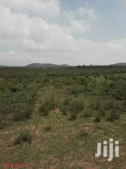 Plot For Quick Sale In Gilgil Nagum | Land & Plots For Sale for sale in Nakuru, Gilgil
