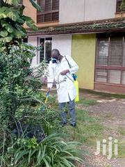 Vitality Pest Control Services Eg Bedbugs Bats Rats Roaches Bees Snake | Cleaning Services for sale in Nairobi, Nairobi Central