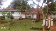 Colonial Bungalow | Houses & Apartments For Rent for sale in Nairobi, Woodley/Kenyatta Golf Course