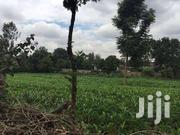 1acre For Sale At Njegas 200m  From The Tarmac | Land & Plots For Sale for sale in Kirinyaga, Kanyekini
