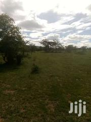 40acres For Sale In Masai Mara | Land & Plots For Sale for sale in Narok, Siana