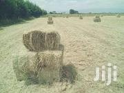 Grass Hay In Thika Cows/Calf/Rhodes/Pedigree/ | Feeds, Supplements & Seeds for sale in Kiambu, Gituamba