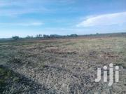 Land For Sale 5 1/2 Mrima Bwitti At 1,000,000 | Land & Plots For Sale for sale in Kwale, Pongwe/Kikoneni