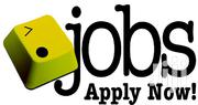 NGO Jobs Opportunities Are Available | Construction & Skilled trade Jobs for sale in Nairobi, Nairobi Central