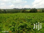 1 Acre In Nyandarua | Land & Plots For Sale for sale in Nyandarua, Mirangine