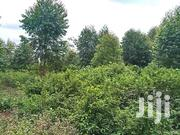 One And Quater Acre For Sale | Land & Plots For Sale for sale in Kirinyaga, Nyangati