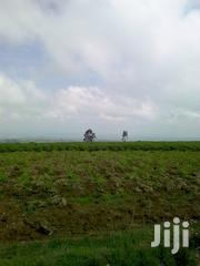 2 Acres Upper Magumu With Rift Valley View | Land & Plots For Sale for sale in Nyandarua, Magumu