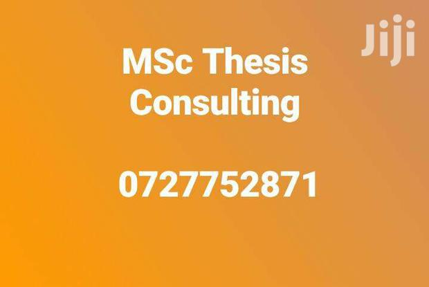 Msc Thesis Consultancy