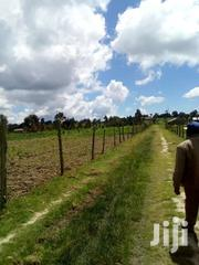 1/2 Acre At Ihidu Naivasha On Sale | Land & Plots For Sale for sale in Nakuru, Biashara (Naivasha)