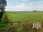4 Acres For Sale In Ngecha, Njoro | Land & Plots For Sale for sale in Nakuru, Njoro